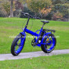 20inch 48V/20.4ah Fat Tyre E-Bike (RSEB-507)
