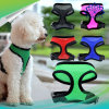 Breast Straps Dog Traction Chain Pet Harness and Leash Products