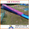 New Design Big Inflatable Slide, Big Inflatable City Slide