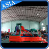 Custom Inflatable Water Slide, Kids Water Play Zone