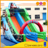 Aoqi New Design Giant Inflatable Wet and Dry Slide (AQ1149-3)