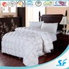 100% 40X40s 233tc Cotton Hotel Bedding Quilt