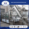 Rotary Type Aseptic Glass Bottled Juice Filling Machine in Stainless Steel