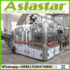 Automatic Monoblock Glass Bottle Beer Rinsing Filling Capping Manufacturing Plant