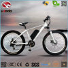 500W Fat Tire A380 Plus Electric Beach Bike for Adult