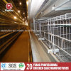 Wire Mesh Steel Container Poultry Farming Equipment H Type Egg Chicken Battery Cage