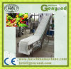 Clean Vegetable Fruit Processing Machine