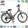 250W Electric Bicycle Brushless Motor for Adult