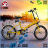 Electric Folding Bike En15194 with Disk Brake for Adult