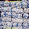 New Crop Fresh Chinese Pure White Garlic 5.0cm-5.5cm