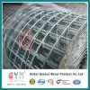 16 Gauge Green PVC Coated Galvanized Welded Wire Mesh Rolls