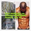 Bodybuilding Product Trenbolon Acetate Good for Bodybuilding Safe!