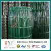 Euro Fence/ PVC Coated Holland Net/ Holland Fence for Sale