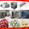 Food Freeze Dryer Fruit Vegetable Coffee Nutrient Vacuum Lyophilizer Price