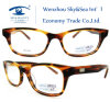 Famous Brands Glasses Optical Eyewear (HM271)