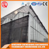 Multi-Span Flower/ Vegetable Tempered Glass Greenhouse