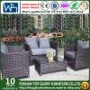 Outdoor Rattan Sofa with Cushion Garden Furniture Leisure Sofa (TG-1260)