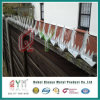 High Secuirty Anti Climb Wall Spikes/ Galvanized Wall Spike Fence