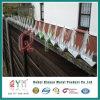 High Secuirty Anti Climb Wall Spikes/ Galvanized Wall Spike Fence