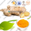 Wholesale FDA Turmeric Curcumin Extract