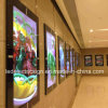 Ultra-Thin LED Light Box for Advertising Display