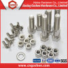 Stainless Steel 304 316 Hex Head Bolt and Nut