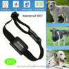 New Developed IP67 Waterproof Pet GPS Tracking Device