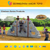 Ce Safe Cheap Kids Outdoor Climbing Wall for Sale (HT-012)