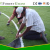 Chinese Artificial Grass, High Quality Synthetic Grass