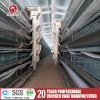 Automatic Hen Layer Cage for Algeria Farm