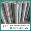 PVC Coated Welded Wire Mesh Roll/ Welded Wire Mesh Roll Prices