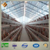 Low-Cost Modern Designed Steel Structure Poultry Farm