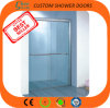 Custom Shower Doors S-CS002