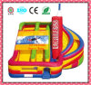 Inflatable Bouncer, Toy Inflatable, Inflatable Jumping Castle Jmq-W078e