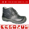 Working Shoes/Steel Toe Cap Work Shoes/Safety Footwear - ABP1-5021