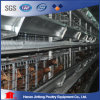 4 Tier Layer Chicken Cage (Poultry Equipment)