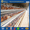 Environment Control Chicken House /Poultry House with Full Set Poultry Equipment