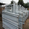 Od48mm X 3.5mm Galvanized Scaffold Steel Tube