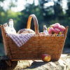 Eco-Friendly Handmade Willow Picnic Basket with Natural Color