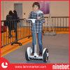 Mini Electric Chariot