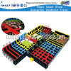 Commercial Tranpoline Playground Equipment Children Playground Sets (HF-19605)