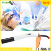 Wireless LED. C Curing Light