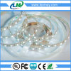 Party Lighting SMD5050 LED Strip Light with 2 years Warranty