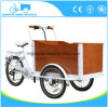 Pedal or Electric Cargo Bike or Trike with Ce Certificate