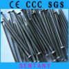 Good Quality Competitive Price Polished/Galvanized Common Wire Nails