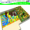 Commercial Indoor Funny Playground for Sale (H15-6019)