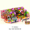 Children Attraction Kids Indoor Playground with Special Design (TY-150508)