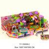 Children Attraction Kids Indoor Playground with Special Design (TY-150508)