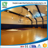 Steel Structure Indoor Stadium