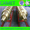 Forged Mill Roll for Skin Pass Mill